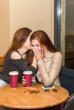 Two girls gossiping in a cafe bar Royalty Free Stock Images