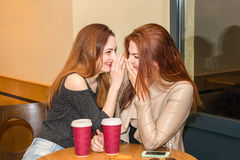 Two girls gossiping in a cafe bar Stock Images
