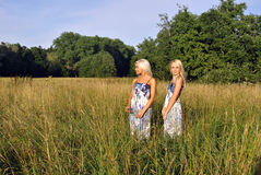 Two girls in the grass near the forest Royalty Free Stock Image