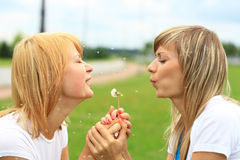 Two girls on the green grass. Stock Photos