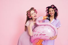 Two girls with hair curlers and flamingo baloon. They are celebrating women`s day March 8. Royalty Free Stock Image