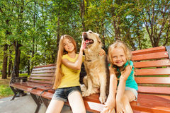 Two girls with happy dog Stock Images