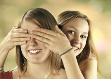 Two girls have fun Stock Photography