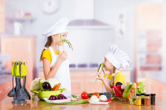 Two girls having fun in the kitchen Royalty Free Stock Image