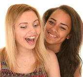 Two girls having a laugh. Portrait of two happy young teenage girls having a laugh, white background Royalty Free Stock Photo