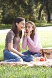 Two girls having picnic in park Stock Photography