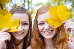 Two girls hiding faces behind maple leaves Royalty Free Stock Photos