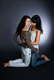 Two girls hot girl-friends. Stock Photography