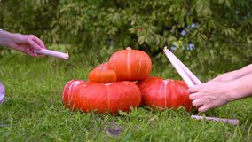 Two girls light candles on Halloween orange pumpkin. Pile of different sized orange pumpkins in the market lies on green grass on. A background of trees