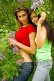 Two girls and a lilac Stock Photography