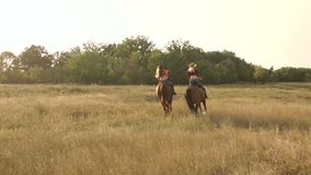 Two girls riding horses in field at sunset. stock video