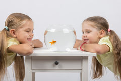 Two girls looking at a goldfish in a small fishbowl. Two happy girls four and six years are at the table on which stands a fishbowl with goldfish Stock Image