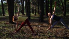 Two girls meditating practicing yoga fitness exercise at sunset in forest. Slow motion steadicam shot. Utthita Trikonasana stock footage