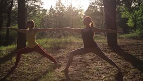 Two girls meditating practicing yoga fitness exercise at sunset in forest. Slow motion steadicam shot. stock video footage