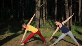 Two girls meditating practicing yoga fitness exercise at sunset in forest. Warrior pose. Two girls meditating practicing yoga fitness exercise at sunset in stock video footage