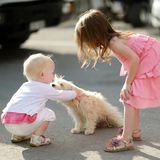 Two girls met a puppy. Two adorable girls met a puppy Stock Photo