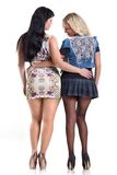 Two girls in pantyhose. Two girls (blonde and brunette) wearing short skirts and pantyhose hugging each other Royalty Free Stock Images