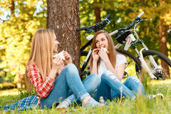 Two girls on a picnic with bikes. Two young beautiful girls with long hair sitting on a blue checkered mat under a tree eating sandwiches and smiling, while Stock Photos