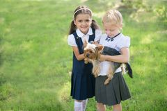 Two girls playing with a dog on the green lawn stock photos