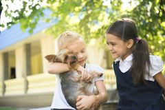 Two girls playing with a dog Stock Photos
