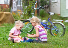 Two girls playing on the green grass Stock Photography