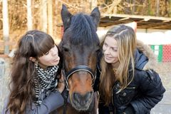 Two girls playing with horse Royalty Free Stock Image