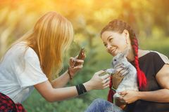 Two Girls with Rabbit on Nature Taking a Photo of Rabbit. Two Girl with Rabbit on Nature Taking a Photo of Rabbit. Little Pretty Bunny on Hands of Asian Girl stock photo