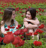 Two girls in a red field. Of Poppy Anemone flowers Stock Photography