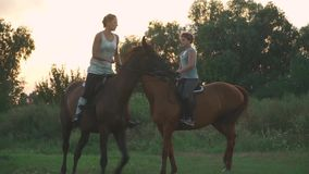 Two girls ride horses. Young girls on horseback outside the city. Two riders on horseback outdoors. Beautiful horses stock video footage