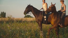 Two girls ride horses. Young girls on horseback outside the city. Two riders on horseback outdoors. Beautiful horses stock footage