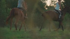 Two girls ride horses. Young girls on horseback outside the city. Two riders on horseback outdoors. Beautiful horses. Young girls on horseback on a field stock footage