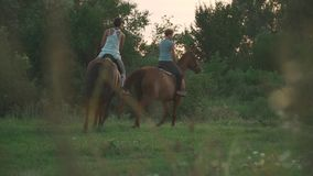 Two girls ride horses. Young girls on horseback outside the city. Two riders on horseback outdoors. Young girls on horseback on a field outside the city stock footage