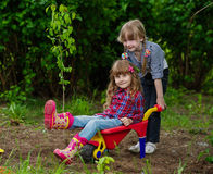Two girls ride in wheelbarrow Royalty Free Stock Photography