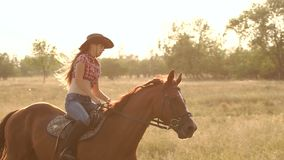Two girls riding a horse in a field at sunset. stock video footage