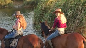 Two girls riding on horses bathed horses in lake. Two girls riding on horses bathe the horses in the lake on a background of reeds stock video footage