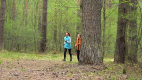 Two girls run through the forest and talk. Two girls, dressed in bright clothes, run through the coniferous forest and talk to each other stock video footage