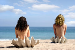Two girls in sea shells. 2 girls in sea shells on the beach Royalty Free Stock Photo