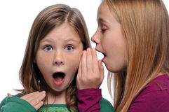 Two girls sharing a gossip. Two girls telling a secret and expressing surprise isolated on white royalty free stock photography