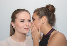 Two girls sharing a secret stock image