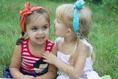 Two girls sharing secrets. Among grass Stock Photos