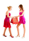 Two girls after shopping. Two young girls quarrel for shopping purchases Stock Photos