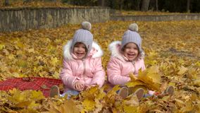 Two girls, sisters in clothing and hats are sitting on yellow le. Aves in autumn park on nature stock footage