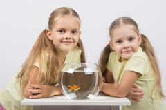 Two girls sit at a round aquarium with goldfish and look in the frame Royalty Free Stock Images