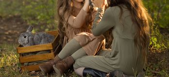 Two girls are sitting under a tree on the grass and petting little rabbits, holding a large gray rabbit in a box nearby. Pastel royalty free stock photos