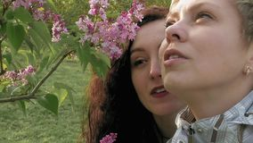 Two girls sniffing lilac flowers in the green park. Two pretty girls or young women sniffing smelling at lilac flowers in the green park in spring. Togetherness stock video