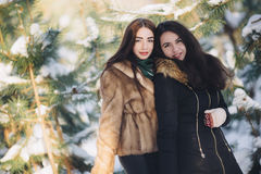 Two girls in a snowy forest Royalty Free Stock Photography