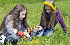 Two girls  spin garland from yellow dandelions Royalty Free Stock Photo