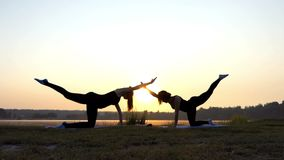 Two Girls Stand on All Fours on a Yoga Mat on a Lake Bank at Sunset. Two Beautiful Women Stand on All Fours on a Mat, Raise an Arm and Leg Each, at a Splendid stock video