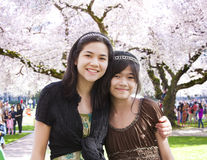 Two girls standing in front of large flowering cherry tree Royalty Free Stock Image