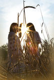 Two girls standing  at sunset. Two girls standing in a field of wheat at sunset backlit sun Stock Image